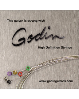 Струны для электрогитары Godin Strings Electric Guitar