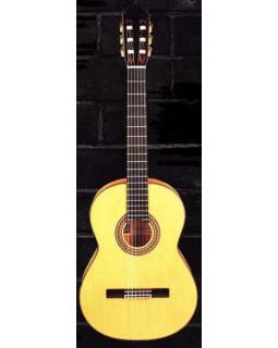 Классическая гитара Manuel Rodriguez FF