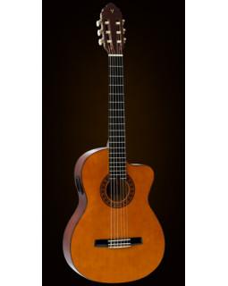 Классическая гитара VALENCIA CG160CVT/NA