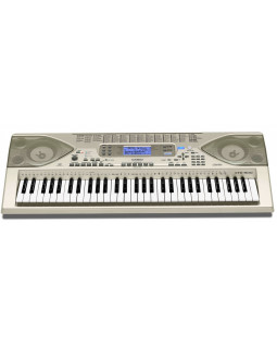 Синтезатор CASIO CTK-900