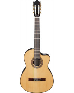 Гитара классическая IBANEZ G200ECE NT