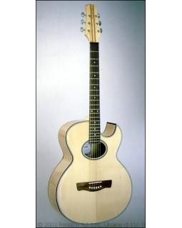 Акустическая гитара RENOME RJL-11-nat