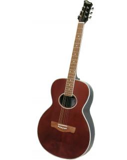 Акустическая гитара RENOME R-10P
