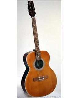 Акустическая гитара RENOME RJ-50-br