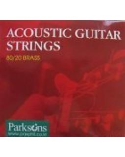 Струны для акустической гитары PARKSONS S1048 ACOUSTIC XL (10-48)