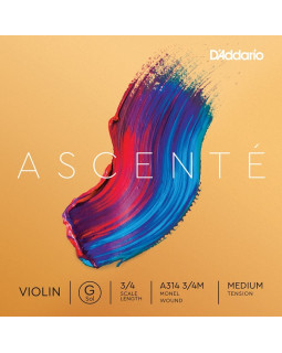 D'ADDARIO ASCENTÉ VIOLIN SINGLE G STRING 3/4 Scale Medium Tension